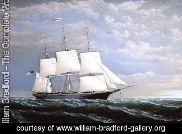 William Bradford - Whaleship 'Syren Queen' of Fairhaven