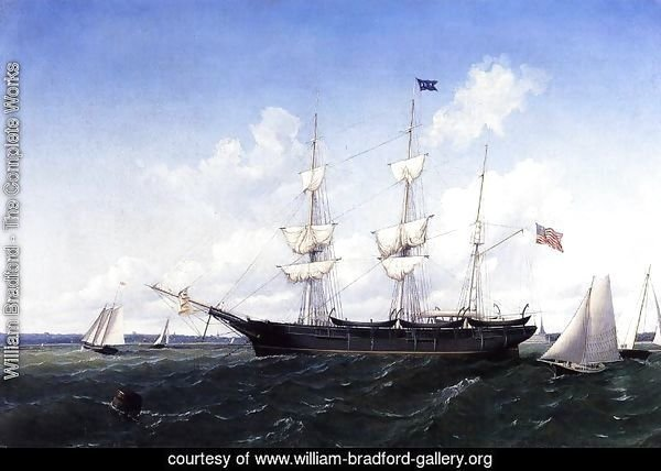 Whaling Bark 'J. D. Thompson' of New Bedford