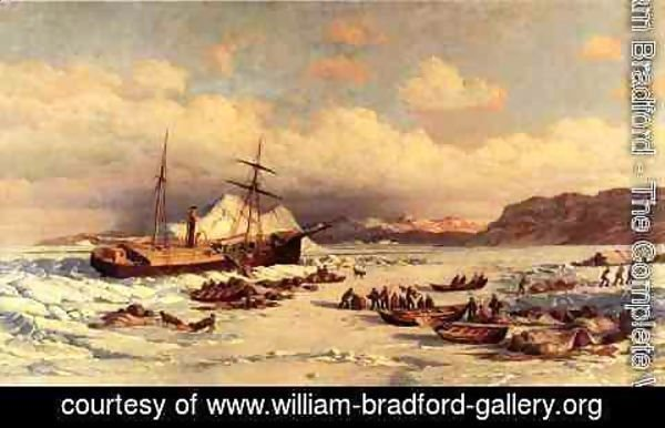 William Bradford - Voyage