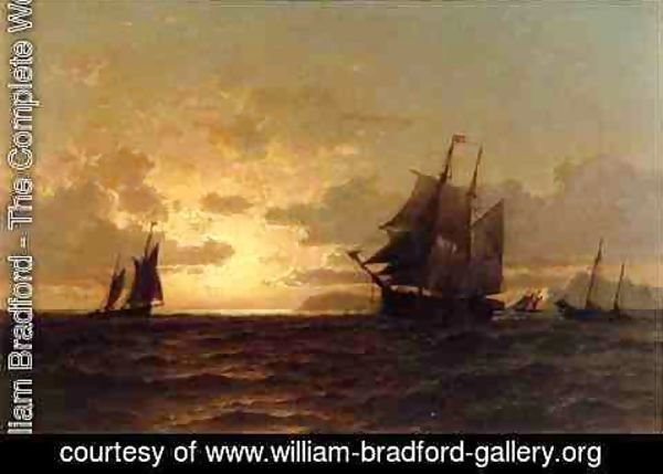 William Bradford - Return of the Whales